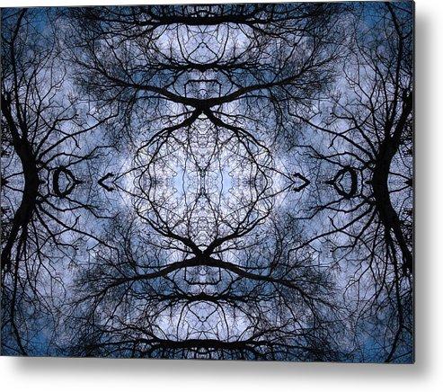 Tree Metal Print featuring the photograph Uknown02 by Marzena Mrugacz