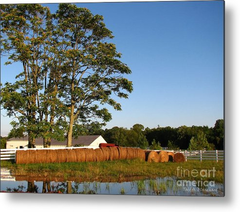 Landscape Metal Print featuring the photograph All In A Row by Todd Blanchard