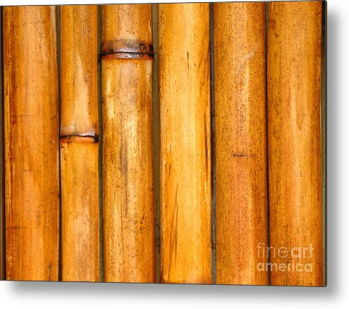 Background Metal Print featuring the photograph Bamboo Poles by Yali Shi