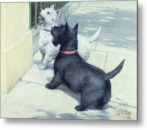 Dog Metal Print featuring the painting Black And White Dogs by Septimus Edwin Scott