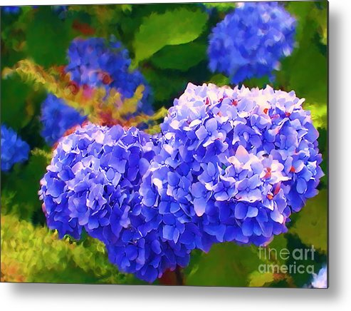 Blue Hydrangea Metal Print featuring the painting Blue Hydrangea by Methune Hively