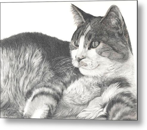 Cats Metal Print featuring the drawing Chance by Lisa Bell