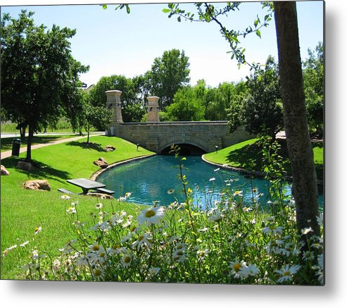 Metal Print featuring the photograph Daysies By The Lake by Diana Moya