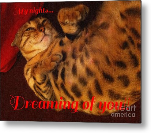 Dreaming Of You Metal Print featuring the photograph Dreaming Of You by Barbara Griffin