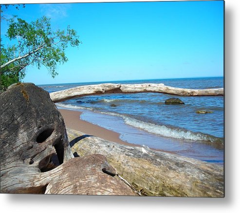 Ocean Metal Print featuring the photograph Driftwood by Peter Mowry