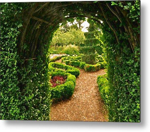 Garden Metal Print featuring the photograph Enchanted Garden by Jean Hall