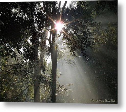 Morning Metal Print featuring the photograph Glorious Sunrise by Linda Ebarb
