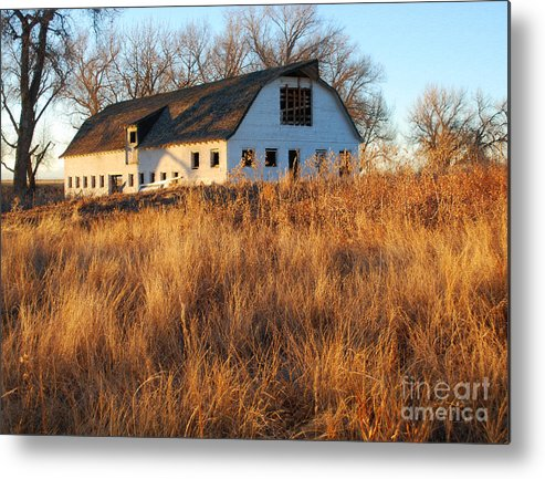Barns Metal Print featuring the photograph Golden Years by Kevin Albright