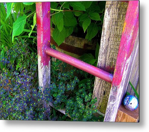 Garden Ladder Metal Print featuring the photograph Laura's Ladder by Jen White
