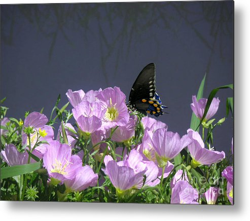 Nature Metal Print featuring the photograph Nature In The Wild - Profiles By A Stream by Lucyna A M Green