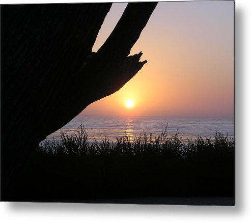 Seascape Metal Print featuring the photograph Pacific Cypress Sunset by Richard Mansfield