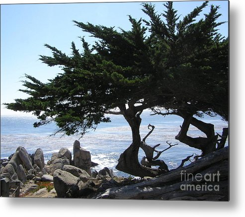 Seascape Metal Print featuring the photograph Pacific Cypress View by Richard Mansfield