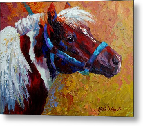 Western Metal Print featuring the painting Pony Boy by Marion Rose