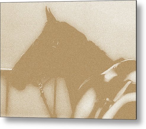 Horses Metal Print featuring the digital art Ready To Ride by Donna Thomas