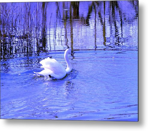 Landscape Metal Print featuring the photograph Reflections In Blue by Kendall Eutemey