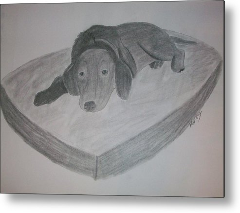 Dog Metal Print featuring the drawing Resting Dog by Kristen Hurley