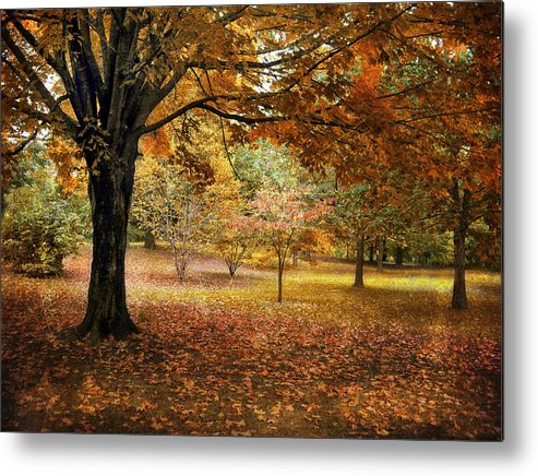 Autumn Metal Print featuring the photograph Rustic Autumn by Jessica Jenney