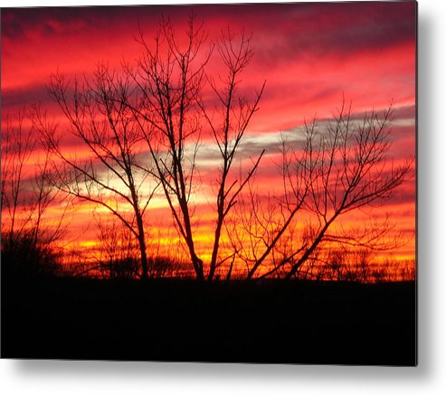 Sky Fire Metal Print featuring the photograph Sky Fire by Ron Moses