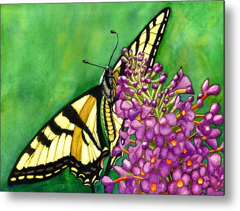 Butterfly Metal Print featuring the painting Swallowtail 1 by Catherine G McElroy