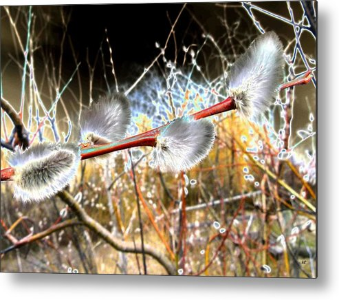 Symbol Of Spring Metal Print featuring the digital art Symbol Of Spring by Will Borden