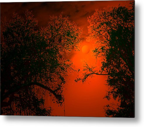 Night Metal Print featuring the digital art Talking Trees Of Night by Bliss Of Art