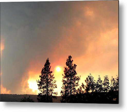 Forest Fire Metal Print featuring the photograph Terrace Mountain Fire 2 by Will Borden