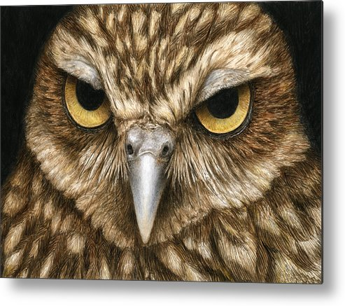 Owl Metal Print featuring the painting The Dubious Owl by Pat Erickson