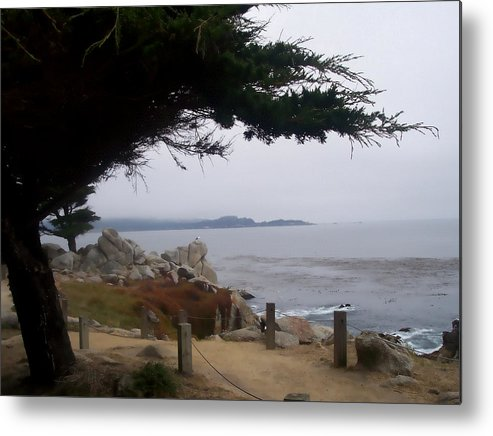 Beach Metal Print featuring the photograph Near Carmel by Pharris Art