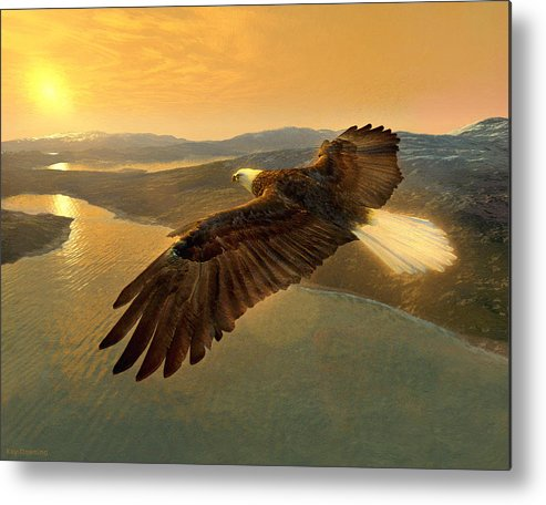 Eagle Metal Print featuring the digital art Soaring Eagle by Ray Downing