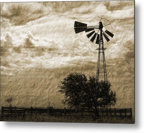 Sepia Metal Print featuring the photograph Wind Blown by Tony Grider