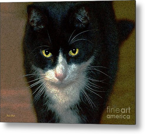 Cats Metal Print featuring the digital art Max by Dale  Ford