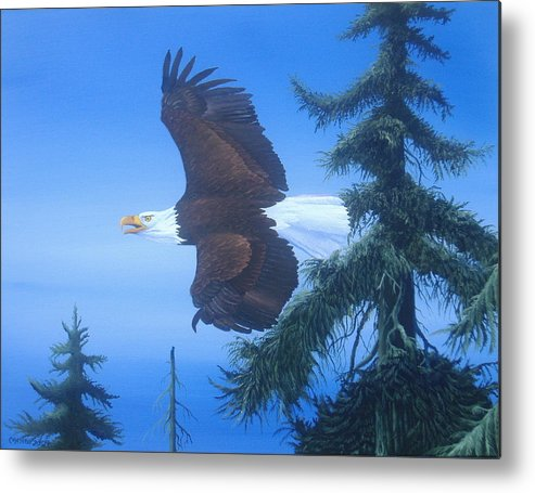Birds Metal Print featuring the painting Eagle At Treetop Level by Michael Allen