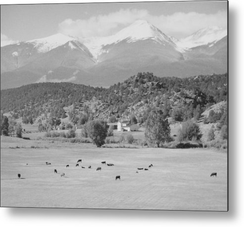 Landscape Metal Print featuring the photograph Mountain Meadow by Allan McConnell
