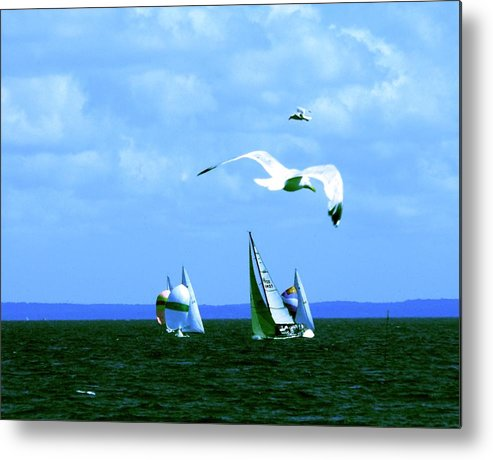 Landscape Metal Print featuring the photograph Soaring by Kendall Eutemey