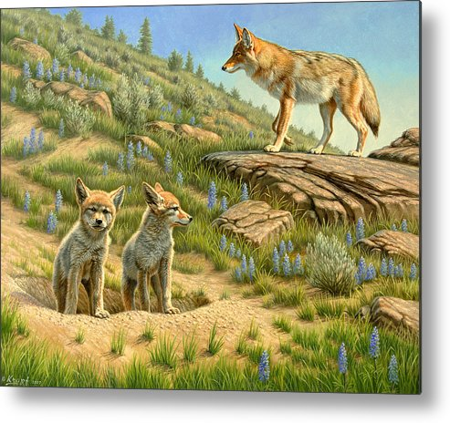Wildlife Metal Print featuring the painting Babysitter - Coyotes by Paul Krapf