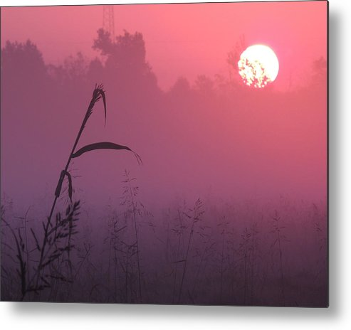 Sunrise Metal Print featuring the photograph Misty Sunrise by LeeAnne Goldsmith