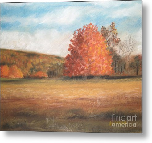 Holden Arboretum Metal Print featuring the drawing Amid The Tranquil Presence Of Change by Lisa Urankar