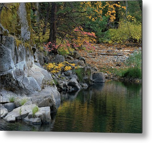 4 Corners Photo Metal Print featuring the photograph Autumn Leaves And Merced River, Mariposa County, California by Troy Montemayor