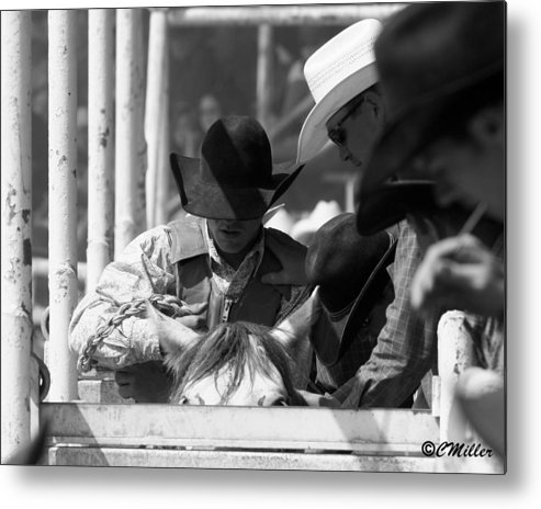 Rodeo Metal Print featuring the photograph Easing In by Carol Miller