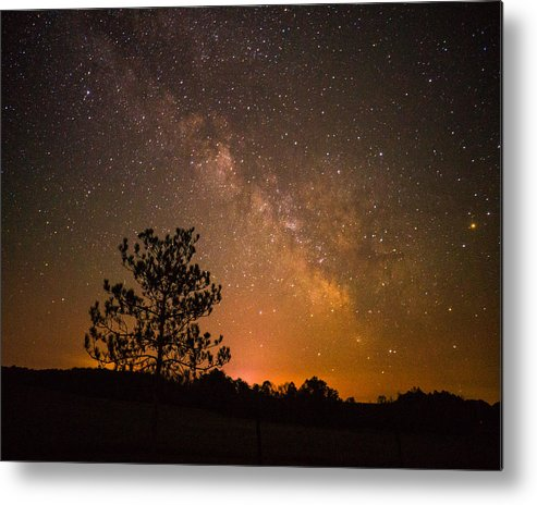 Night Metal Print featuring the photograph Night Companions by LuAnn Griffin