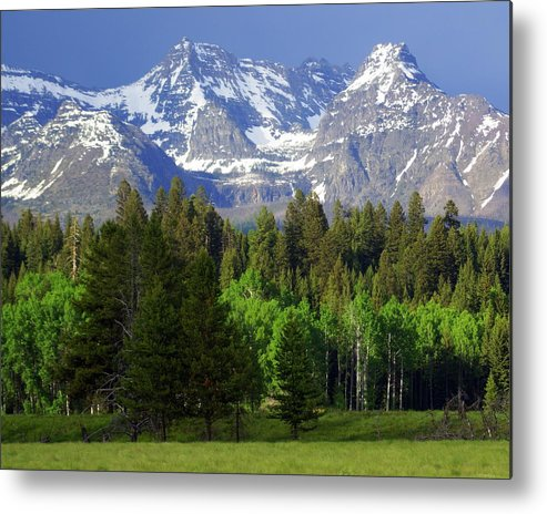 Mountains Metal Print featuring the photograph Peaks by Marty Koch