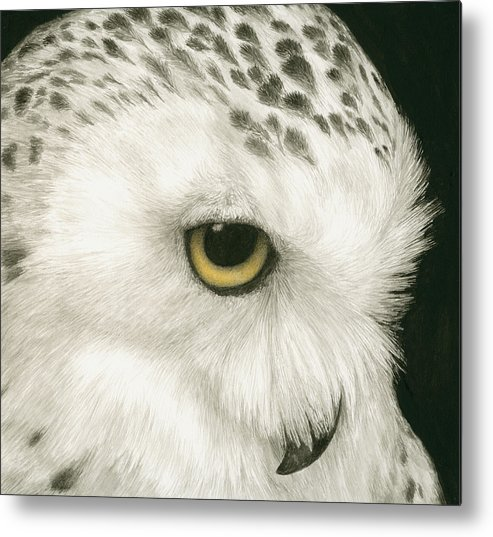 Owl Metal Print featuring the painting Topaz In The Snow by Pat Erickson