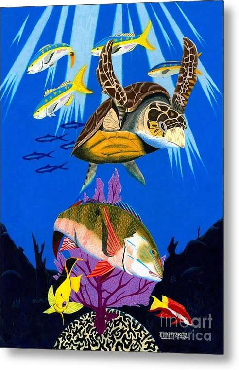 Hawksbill Metal Print featuring the drawing Turtle Reef by Jonathan Teeter