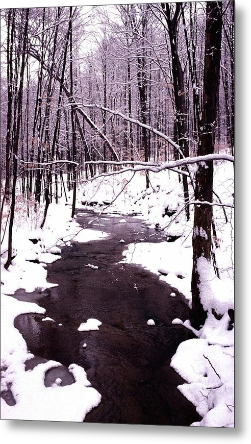 Winter Metal Print featuring the photograph 10802-1 by Mike Davis