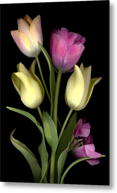 Tulips Metal Print featuring the digital art Bouquet of Tulips by Sandi F Hutchins