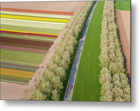 Scenics Metal Print featuring the photograph Car On Road Near Tulip Fields, Holland by Peter Adams