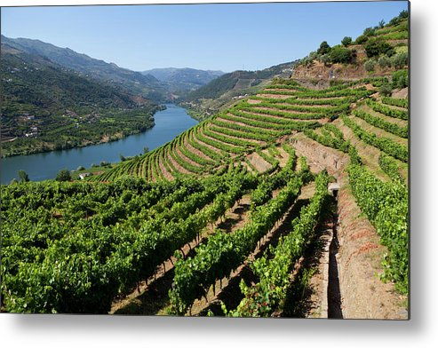 Douro River Metal Print featuring the photograph Douro Valley by Luisportugal