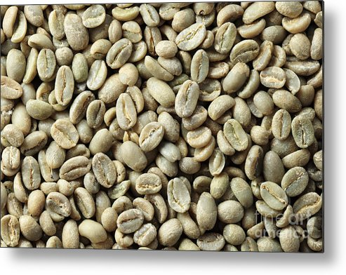Green Coffee Bean Background Metal Print By Tom Grundy