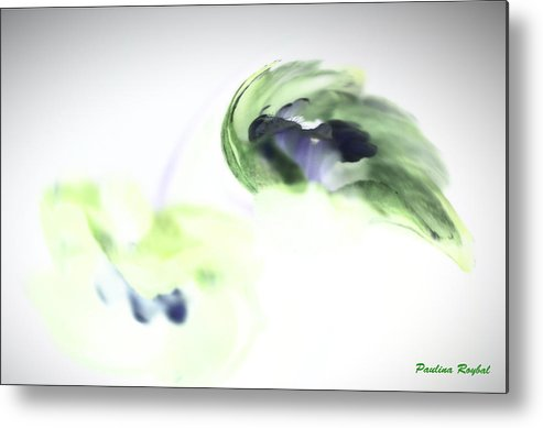 Abstract Phototgraphy Metal Print featuring the photograph Incana abstract 2 by Paulina Roybal