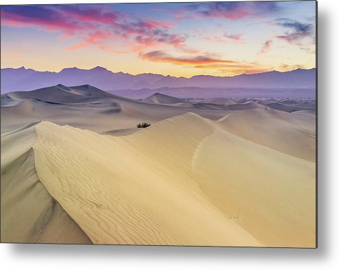 Tranquility Metal Print featuring the photograph Mesquite Flat Sand Dunes by Zx1106